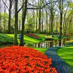 Jesienna architektura ogrodowa