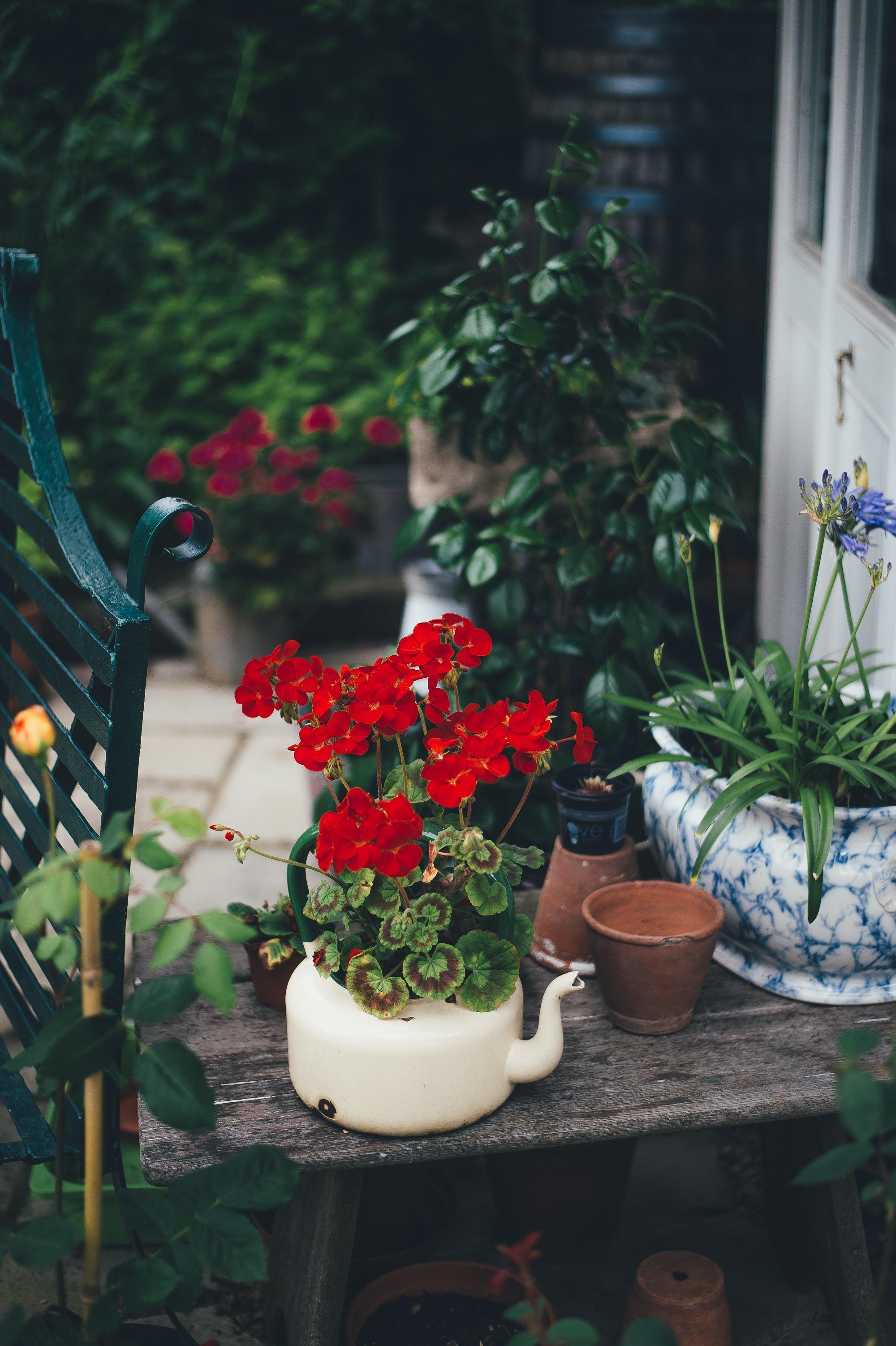 Urządzenia, które ułatwią zadbanie o duży ogród