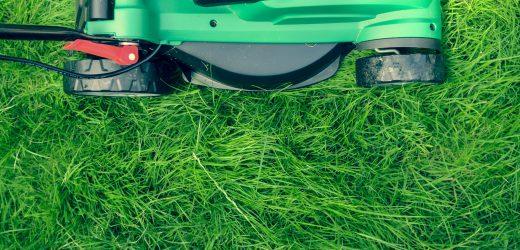 Dlaczego warto wybrać akumulatorowe narzędzia ogrodnicze?