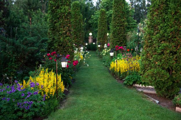 Piękny i zadbany ogród